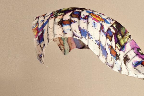 tekstil-baskisinda-gecmis-ve-gelecek